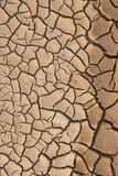 Dry cracked earth. Stock Image