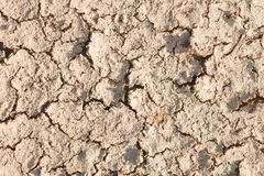 Dry cracked earth. Stock Photos