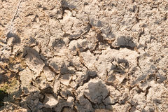 Dry cracked earth. Royalty Free Stock Photos