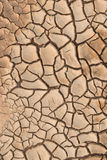 Dry cracked earth. Royalty Free Stock Image
