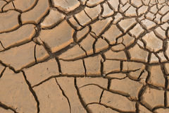 Dry cracked earth. Royalty Free Stock Photography
