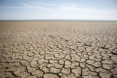 Dry cracked earth. Dry, landscape Royalty Free Stock Images