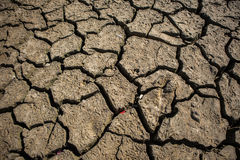 Dry cracked earth. Dry, landscape Royalty Free Stock Image