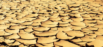 Dry cracked earth Royalty Free Stock Images