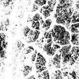 Distress Overlay Texture Stock Photography