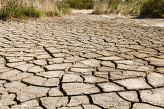 Dry Cracked Earth Stock Photos