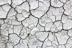 Dry, cracked earth. dry cracked soil texture and background on dry season grayscale.  stock photo