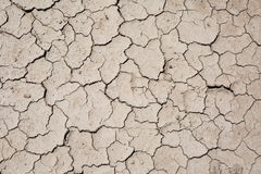 Dry cracked earth surface Royalty Free Stock Photography