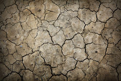Dry cracked earth texture. Stock Images