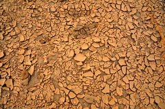 Dry cracked earth texture Stock Images