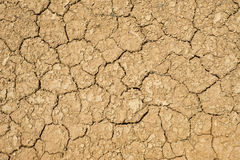 Dry and cracked earth. Cracked and dry earth texture, background Royalty Free Stock Photography