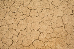 Dry and cracked earth. Cracked and dry earth texture, background Stock Images