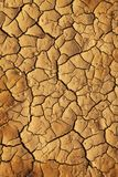 Dry cracked earth Stock Photography