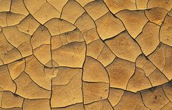Dry cracked earth. Texture, background Stock Photo
