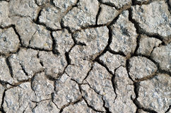 Dry cracked earth texture Stock Photography