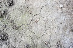 Dry cracked earth texture. Background stock photography