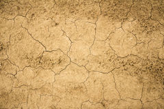 Dry cracked earth texture. General illustration stock images
