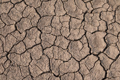 Dry and cracked earth texture. Global climate change Stock Images