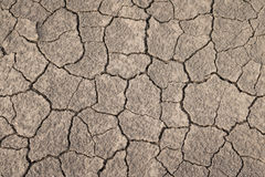Dry and cracked earth texture. Global climate change Royalty Free Stock Images