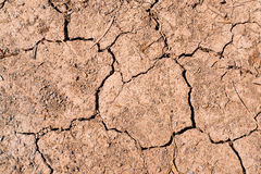 Dry cracked earth texture Stock Image