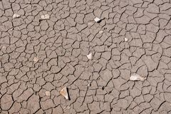 Dry cracked earth texture. Photo Picture of Dry cracked mud earth texture stock images