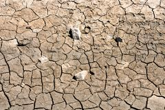 Dry cracked earth texture. Photo Picture of Dry cracked mud earth texture royalty free stock images