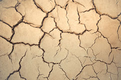 Dry and cracked earth tone. Royalty Free Stock Photos