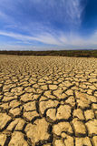 Dry cracked earth under the blue sky. Royalty Free Stock Photo