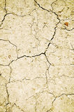 Dry cracked ground Royalty Free Stock Photo