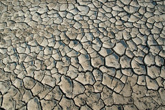 Dry and cracked ground Royalty Free Stock Image
