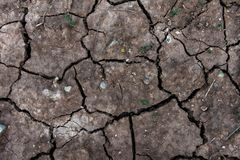 Dry cracked ground for background and design. Earth ground crack with dust and rough dry surface texture Climate change Stock Photos