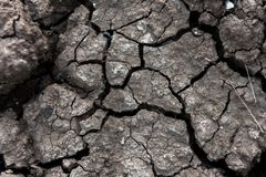 Dry cracked ground for background and design. Earth ground crack with dust and rough dry surface texture Climate change Stock Images