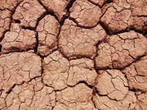 Dry cracked ground. Background of dry cracked red-earth Stock Photography