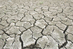 Dry cracked ground becoming a desert Stock Image