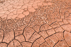 Dry cracked the ground Stock Image