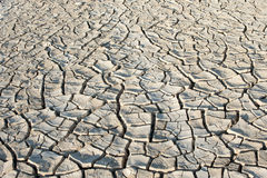 Dry cracked ground Royalty Free Stock Image