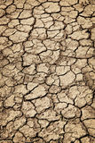 Dry cracked ground during drought Royalty Free Stock Photography