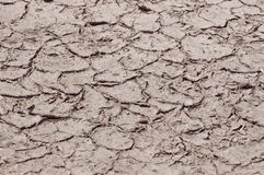 Dry cracked ground. Dry cracked earth in the dry season Stock Photo