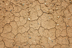 Dry cracked ground Royalty Free Stock Photography