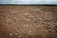 Dry and cracked ground. Stock Image