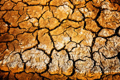 Dry and cracked ground. Royalty Free Stock Images