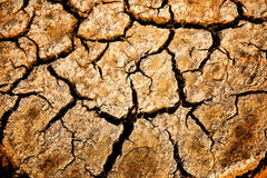 Dry and cracked ground. Royalty Free Stock Photography
