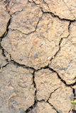 Dry and cracked ground. The ground that is not water causes dry and cracked Royalty Free Stock Photos