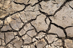 Dry cracked ground surface Royalty Free Stock Image