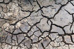 Dry cracked ground surface Stock Image