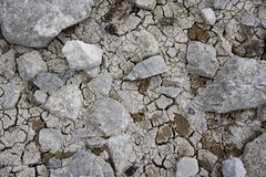 Dry cracked ground texture Royalty Free Stock Images