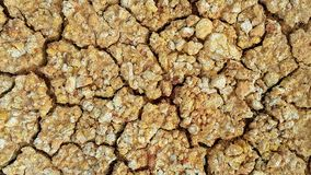 Dry and Cracked ground Royalty Free Stock Images