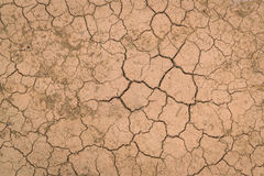 Dry and cracked ground texture . Stock Photo