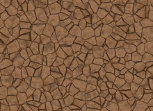 Dry cracked ground texture. abstract relief pattern Stock Images