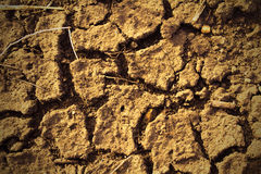 Dry cracked ground texture Royalty Free Stock Photos